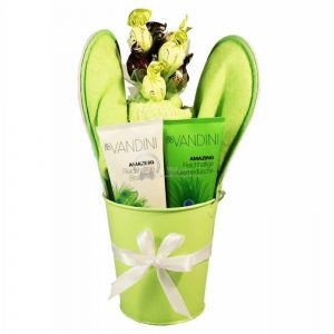 Green My Day – Spa Christmas Gift Basket